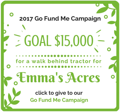 Emma's-Acres-Go-Fund-Me-Campaign-2017